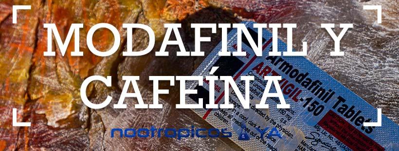 cafe y modafinilo