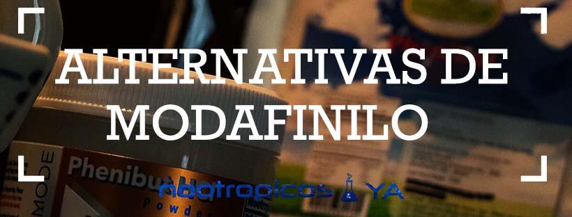 modafinilo alternativas